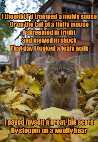 The Leafy Walk by JB