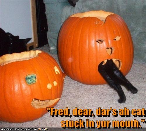 """""""Fred, dear, dar's ah cat                                                                                                           stuck in yur mouth."""""""