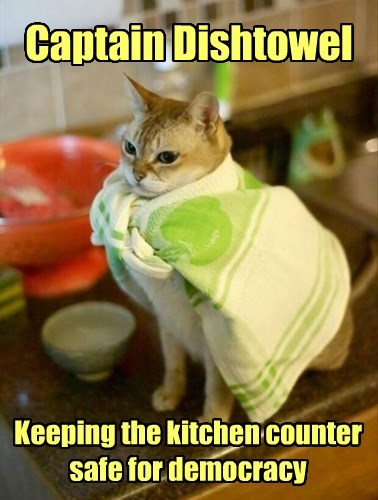 O Can Opener, I Stand on Guard for Thee