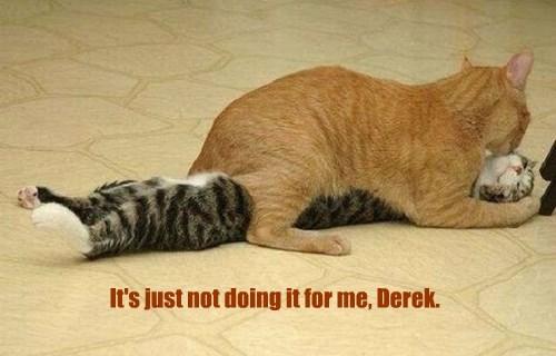 It's just not doing it for me, Derek.