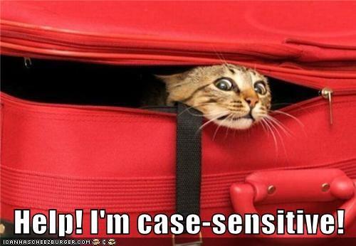 Help! I'm case-sensitive!