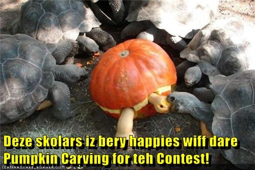 Deze skolars iz bery happies wiff dare Pumpkin Carving for teh Contest!