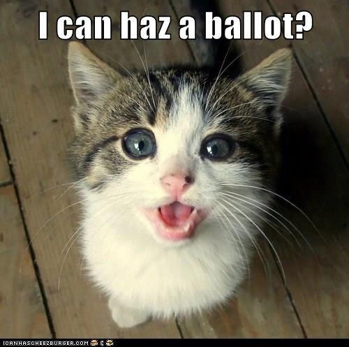 I can haz a ballot?