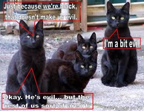 Just Because We're Black Doesn't Make Us Evil