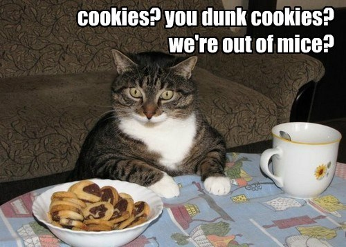 cookies? you dunk cookies?  we're out of mice?