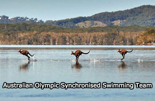 Australian Olympic Synchronised Swimming Team