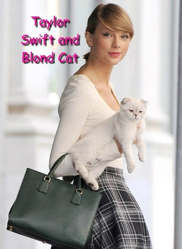 Taylor Swift and Blond Cat