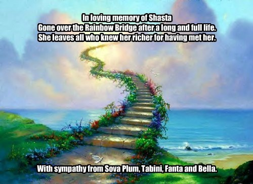 Sympathy card for Sylviag and family.
