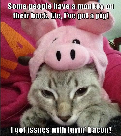 Some people have a monkey on their back. Me, I've got a pig!  I got issues with luvin' bacon!