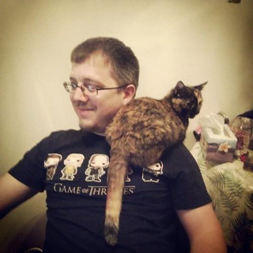 #UberKITTENS  proud cat workers