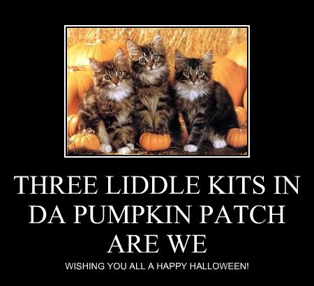 THREE LIDDLE KITS IN DA PUMPKIN PATCH ARE WE