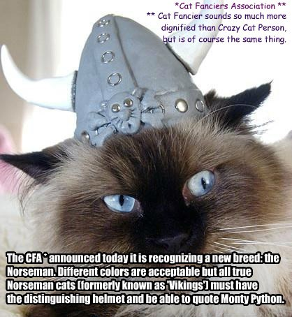 The CFA * announced today it is recognizing a new breed: the Norseman. Different colors are acceptable but all true Norseman cats (formerly known as 'Vikings') must have  the distinguishing helmet and be able to quote Monty Python.