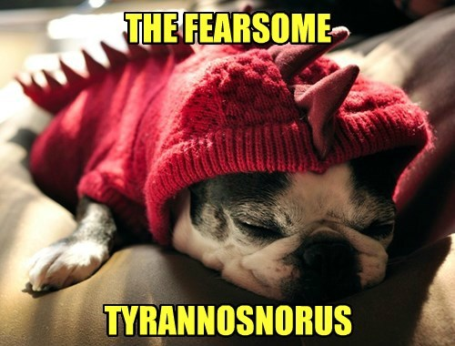 dogs,fearsome,tyrannosaurus,snore,captions