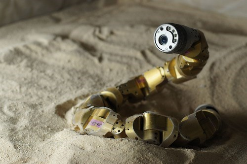 Snake-Like Robots Maybe Able to Maneuver Up Sanddunes