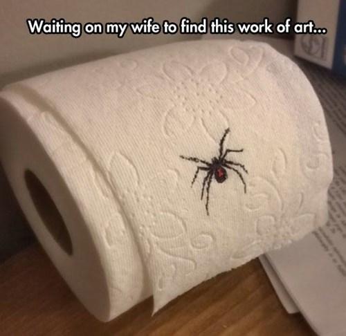spiders,toilet paper