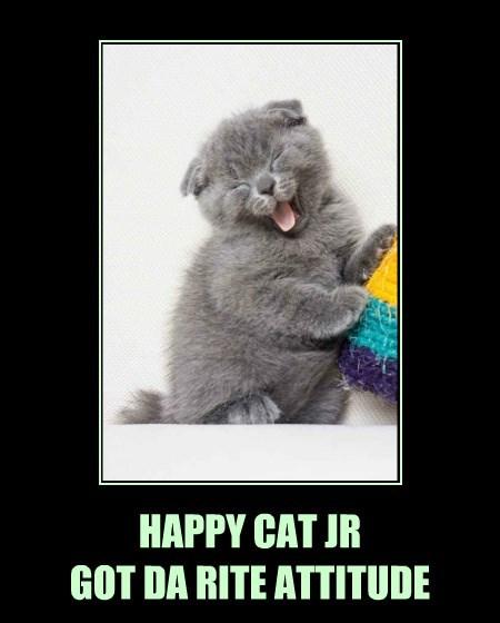 HAPPY CAT JR GOT DA RITE ATTITUDE