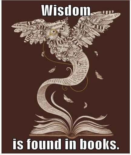 Wisdom  is found in books.