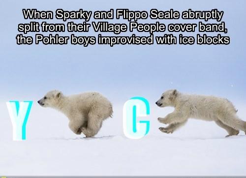 polar bear,village people,ymca