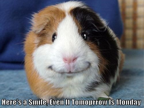 Here's a Smile, Even If Tomoprrow Is Monday