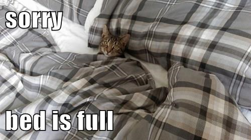 sorry  bed is full