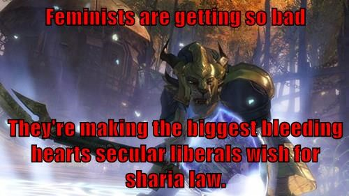 Feminists are getting so bad  They're making the biggest bleeding hearts secular liberals wish for sharia law.
