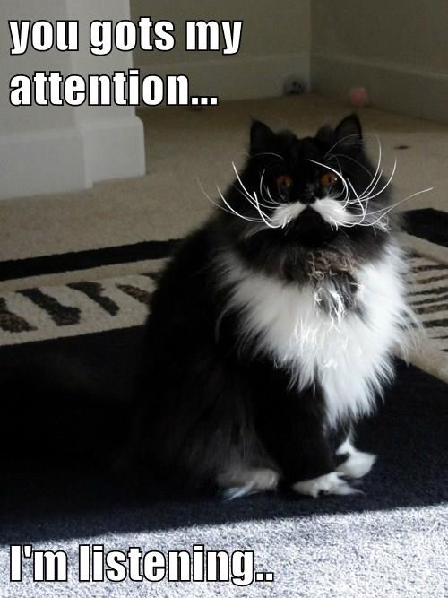 you gots my attention...  I'm listening..