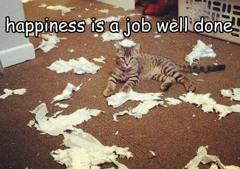 happiness is a job well done