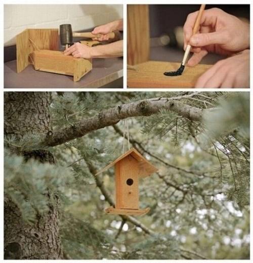 birds,birdhouses