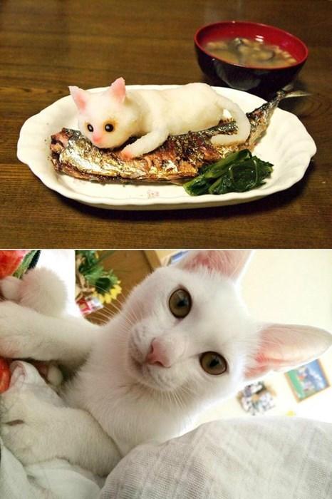 design,radish,carving,Cats