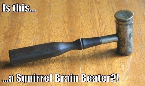 Squirrel-brain Beater