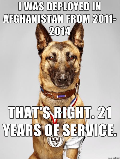 He's a Long Veteran