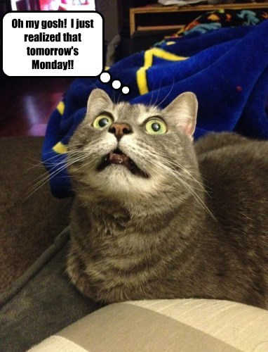 Oh my gosh!  I just realized that tomorrow's Monday!!