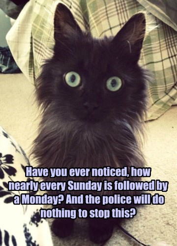 Have you ever noticed, how  nearly every Sunday is followed by  a Monday? And the police will do nothing to stop this?