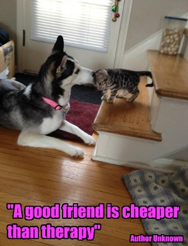 """A good friend is cheaper than therapy"""