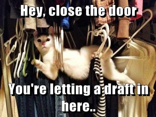 Hey, close the door  You're letting a draft in here..