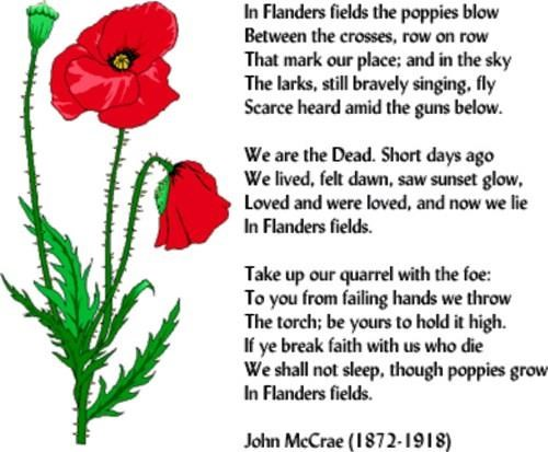 Flanders fields were staging areas in Belgium for Allied troops during The Great War (WWI)