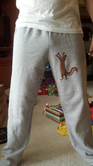 poorly dressed,pants,sweatpants,squirrel