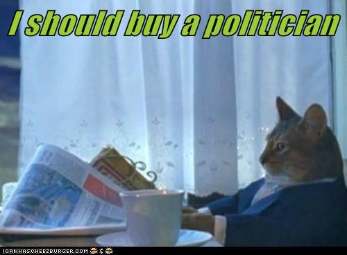 I should buy a politician