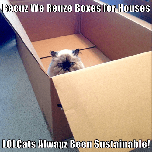 Us LOLCats Are Sustainable