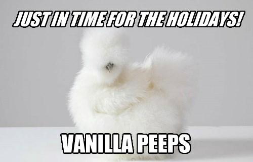 candy,holidays,chicken,polarizing,peeps