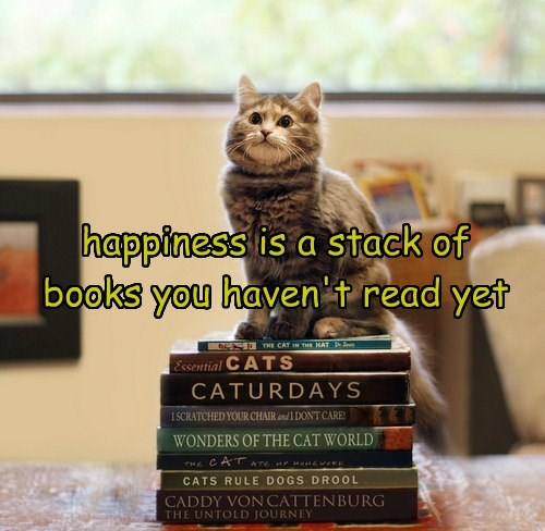 happiness is a stack of books you haven't read yet