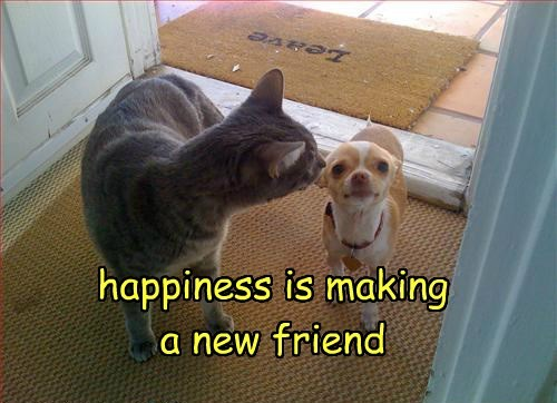 happiness is making a new friend