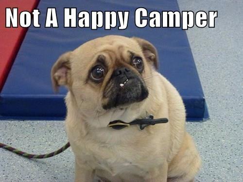 Not A Happy Camper