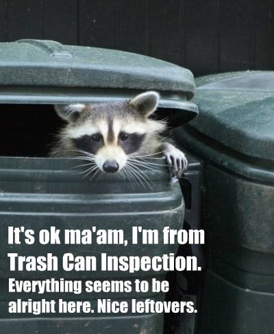 It's ok ma'am, I'm from  Trash Can Inspection.
