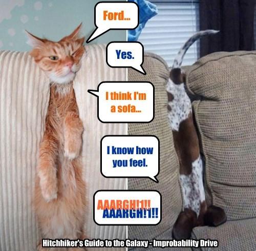 I think I'm a sofa...