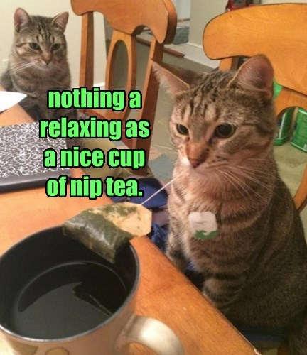 nothing a relaxing as  a nice cup  of nip tea.