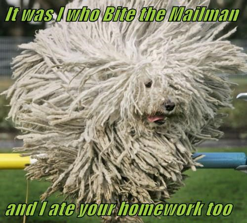 It was I who Bite the Mailman  and I ate your homework too
