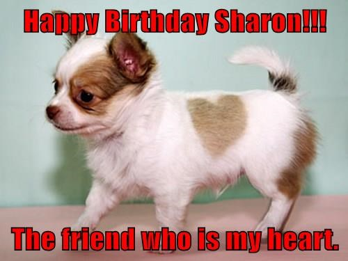 Happy Birthday Sharon!!!  The friend who is my heart.