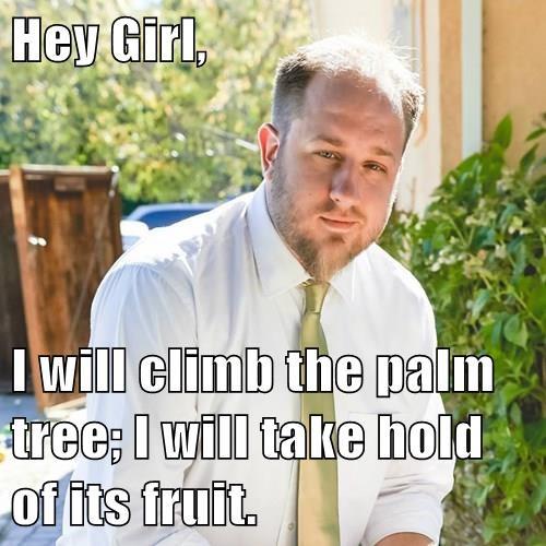 Hey Girl,  I will climb the palm tree; I will take hold of its fruit.
