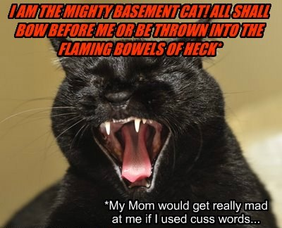 I AM THE MIGHTY BASEMENT CAT! ALL SHALL BOW BEFORE ME OR BE THROWN INTO THE FLAMING BOWELS OF HECK*